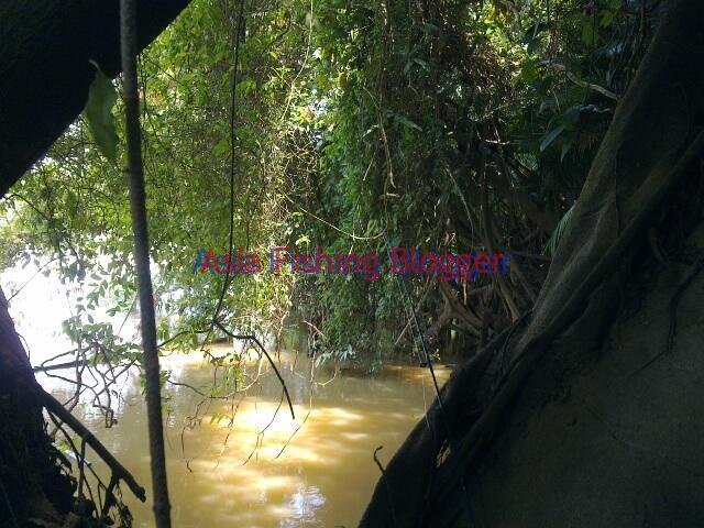 udang galah fishing spot