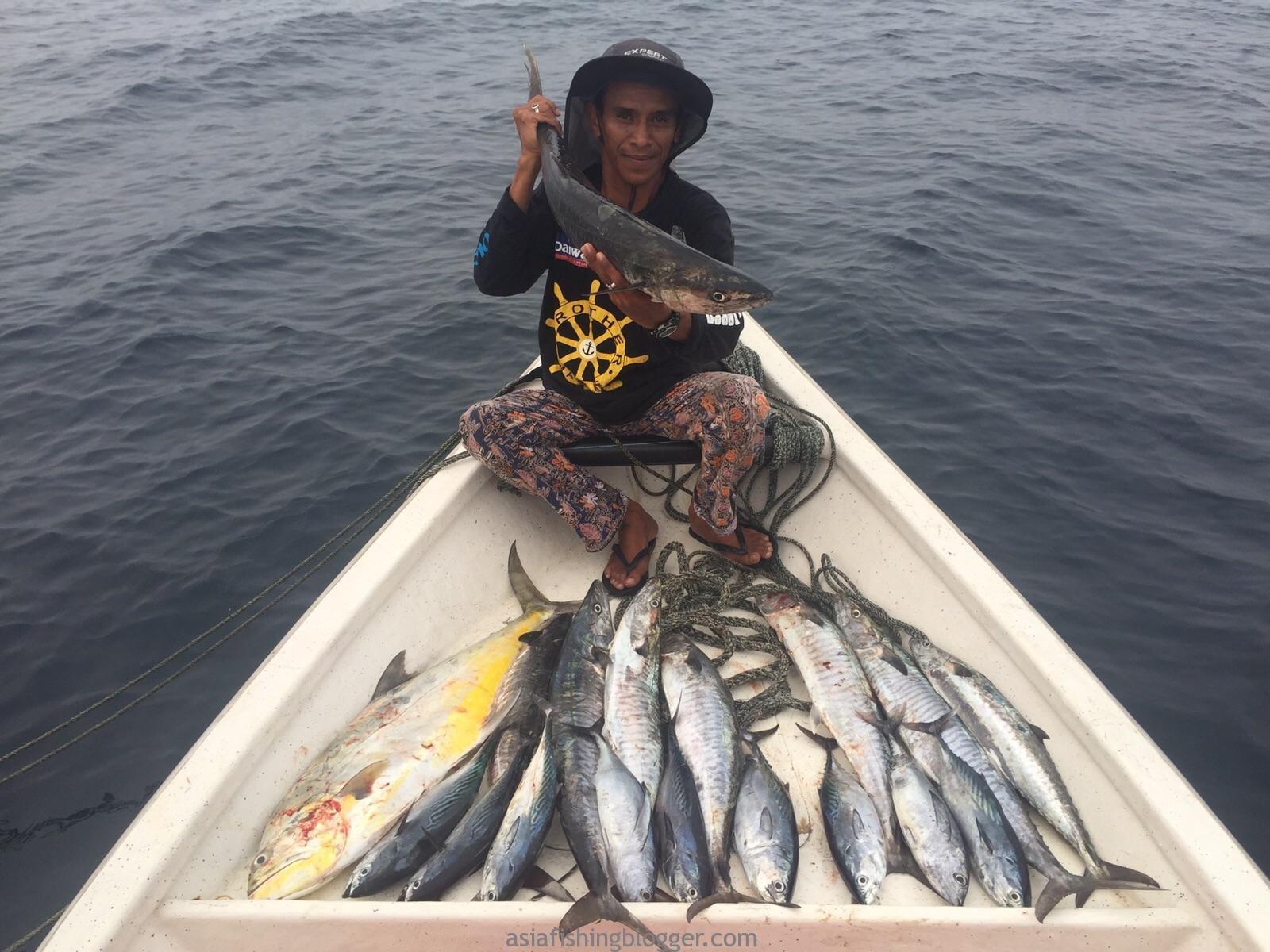 special fishing adventure tips ,Malaysia Mackerel